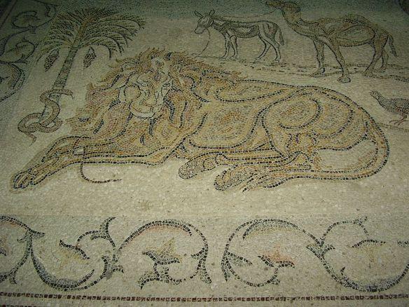 לפי המסורת שלף נזיר קוץ מכף רגלו של אריה, ואותו אריה היה נאמן לאדם עד יום מותו ( מנזר דיר חג'לה בבקעת הירדן ליד יריחו)